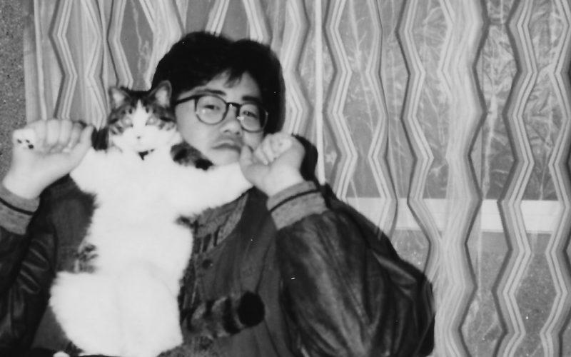 昭和61年 猫