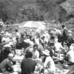 昭和40年代 桜まつり